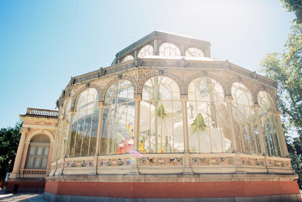 Mi paseo por el Palacio de Cristal del Retiro con un solo carrete. 1